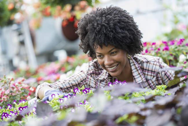 Mulher afro-americana tendendo flores em viveiro. — Fotografia de Stock