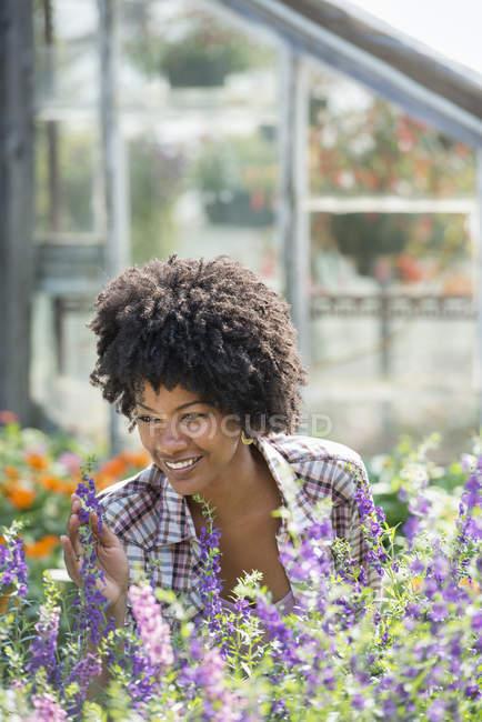 Усміхається жінка тенденцію цвітіння рослин у розплідники заводі — стокове фото