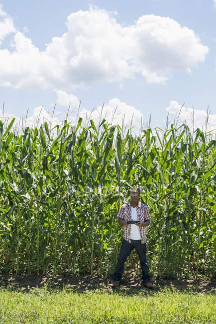 Молодой человек в повседневной одежде стоит перед кукурузными культурами и держит в руках цифровую табличку . — стоковое фото
