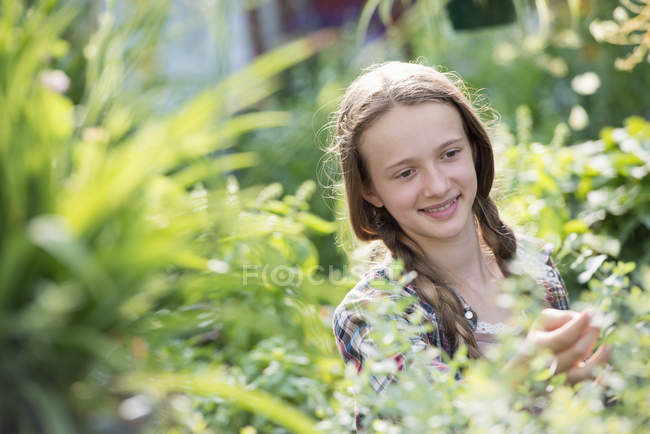 Pre-adolescent girl working in field of flower nursery. — Stock Photo
