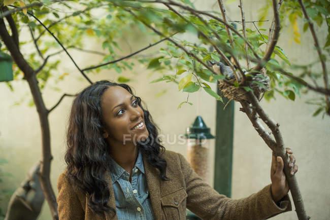 Жінка, дивлячись на птахів, сидячи на гніздо на дереві. — стокове фото
