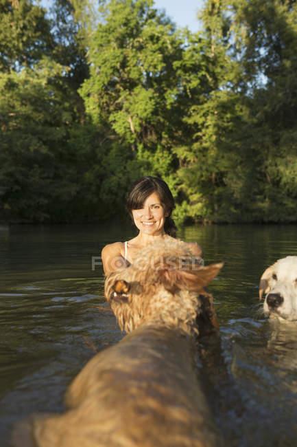 Середині дорослу жінку плавання з двох собак в озеро води. — стокове фото