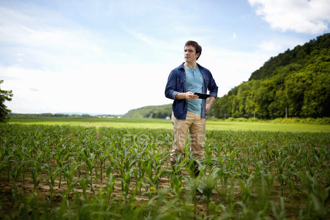 Young farmer using digital tablet in organic corn farm field. — Stock Photo