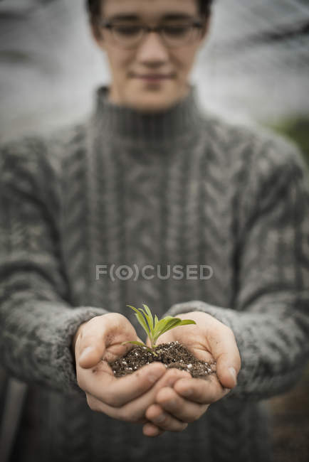 Man holding small plant seedling in cupped hands. — Stock Photo