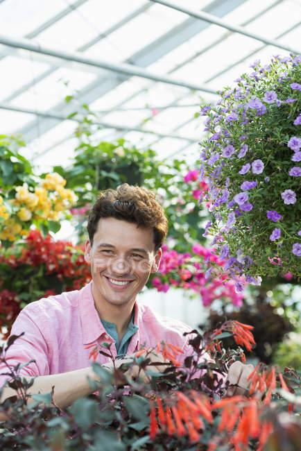 Homem adulto médio verificando e tendendo flores em estufa de viveiro — Fotografia de Stock
