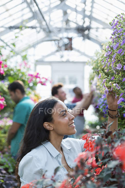 Group of gardeners tending flowers in greenhouse of plant nursery. — Stock Photo