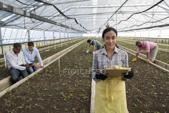 Jovem mulher segurando a prancheta com documentação em estufa de viveiro com jardineiros de trabalho — Fotografia de Stock