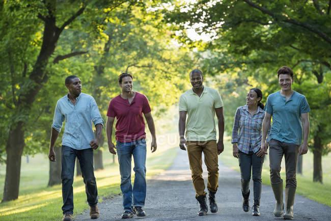 Cinq personnes marchant sur l'avenue dans le parc rural . — Photo de stock
