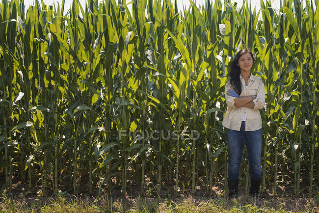 Young woman standing with arms folded in front of maize field. — Stock Photo
