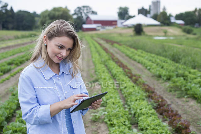 Woman inspecting lettuce crops with digital tablet on organic farm field. — Stock Photo