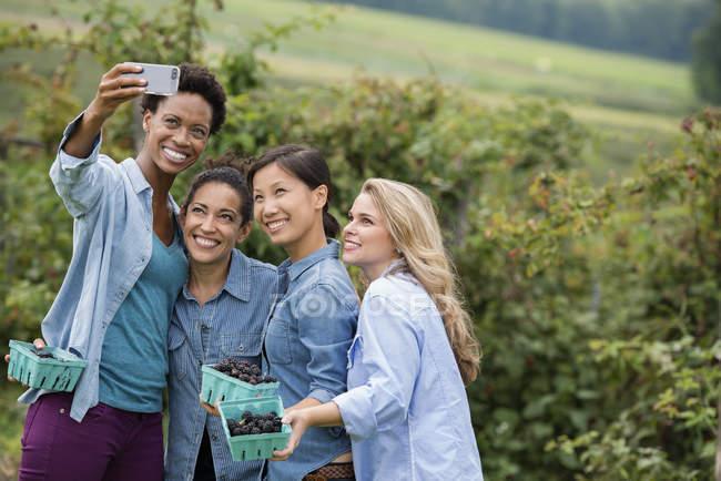 Quatre femmes posant pour selfie tout en utilisant le smartphone à la ferme de blackberry — Photo de stock
