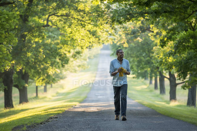 Man walking down avenue in countryside park. — Stock Photo