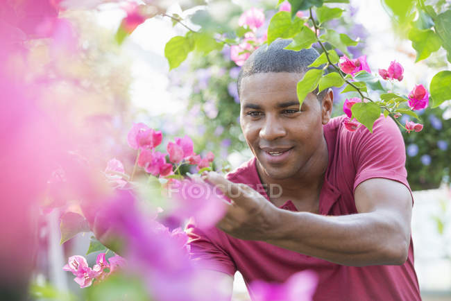 Mid adult man checking and tending flowers in greenhouse of plant nursery. — Stock Photo