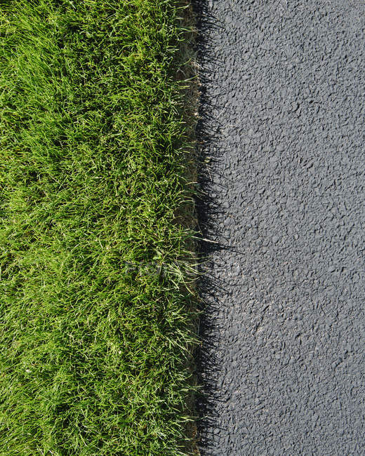 Detail of lush, green grass and sidewalk — Stock Photo