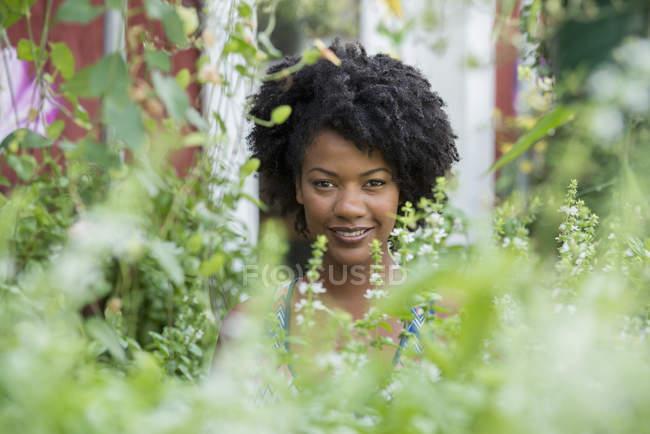 Retrato de mujer afroamericana en un vivero de plantas rodeado de follaje verde . - foto de stock