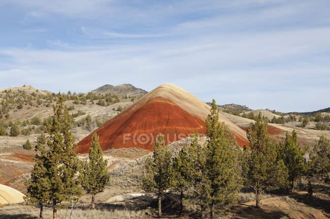 Vulkanische Felsformationen und Wald in Oregon Landschaft — Stockfoto