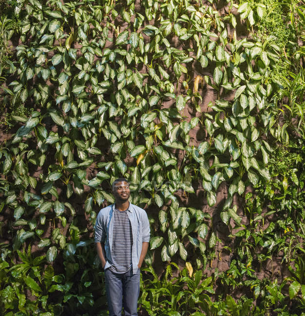 Man looking up in font of green wall of climbing plants and foliage. — Stock Photo