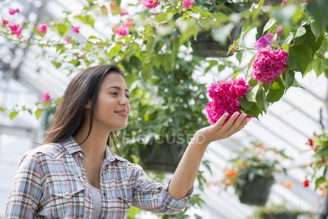 Smiling woman tending flowers in organic nursery greenhouse. — Stock Photo