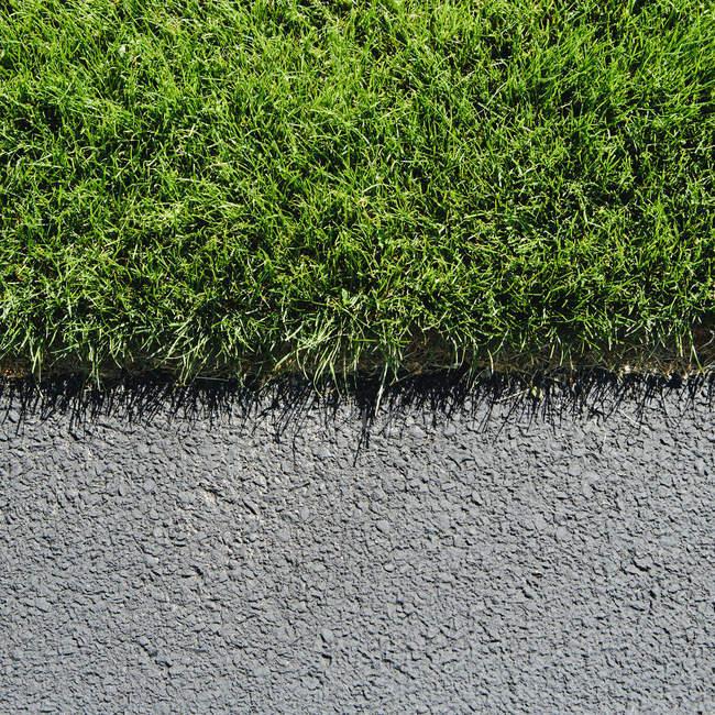 Деталь из пышные, зеленые травы и тротуар — стоковое фото