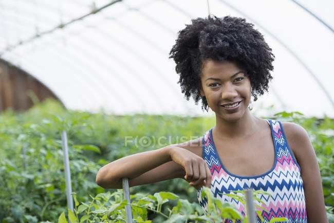 Mid adult woman standing in glasshouse with green tomato plants. — Stock Photo