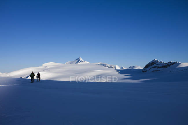 Two skiers on slope in mountainous landscape of Wapta Traverse in Rocky Mountains, Canada. — Stockfoto