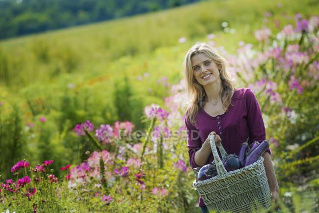 Женщина, улыбаясь и проведение корзинка о баклажаны в цветущий луг на органические фермы — стоковое фото