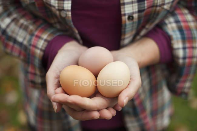 Vue recadrée de la femme tenant une couvée d'œufs de poulet biologiques frais . — Photo de stock