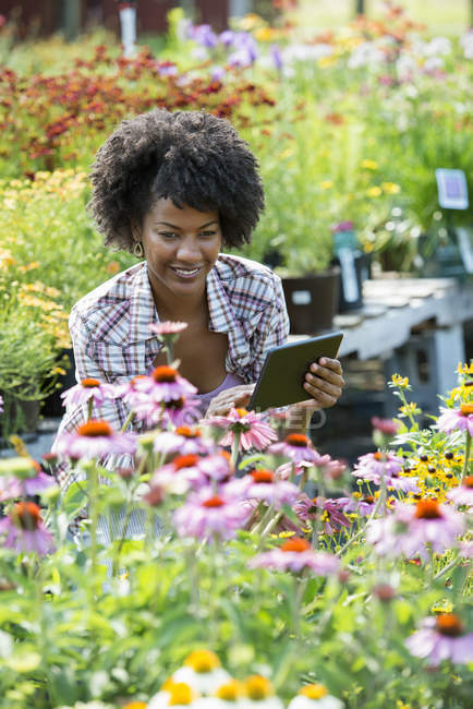 Woman using digital tablet in plant nursery surrounded by flowering plants and green foliage. — Stock Photo