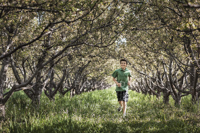 Boy running in woodland tunnel of overarching tree branches. — Stock Photo