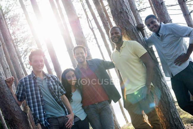 Группа друзей собралась в тени сосновых деревьев на берегу озера летом . — стоковое фото