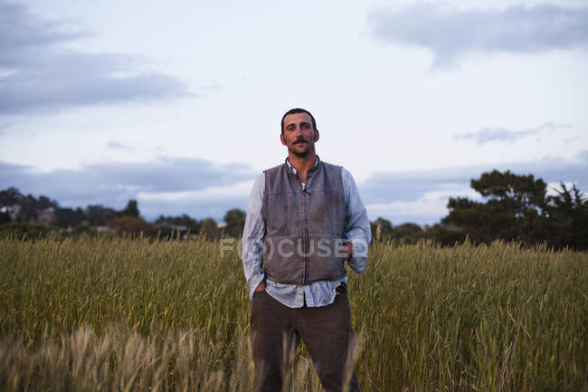 Man standing in field of growing cereal crops in Santa Cruz, California, USA. — Stock Photo