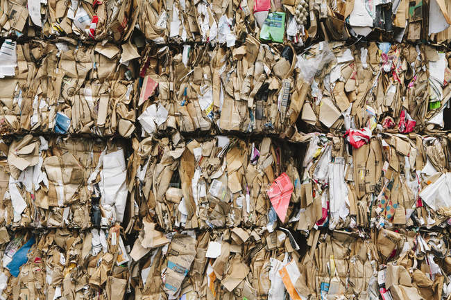 Recycling facility with bundles of cardboard sorted and tied up for recycling. — Stock Photo