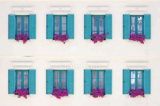 Вікна та ящики з фіолетовими квітами, Карлові Вари, Чехія — стокове фото