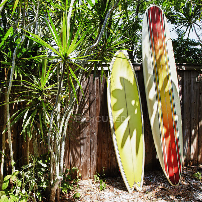 Surfboards leaning against fence, Bradenton, Florida, USA — Stock Photo