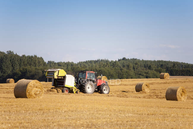 Tractor harvesting hay and packing hay bales in field, Estonia — Stock Photo