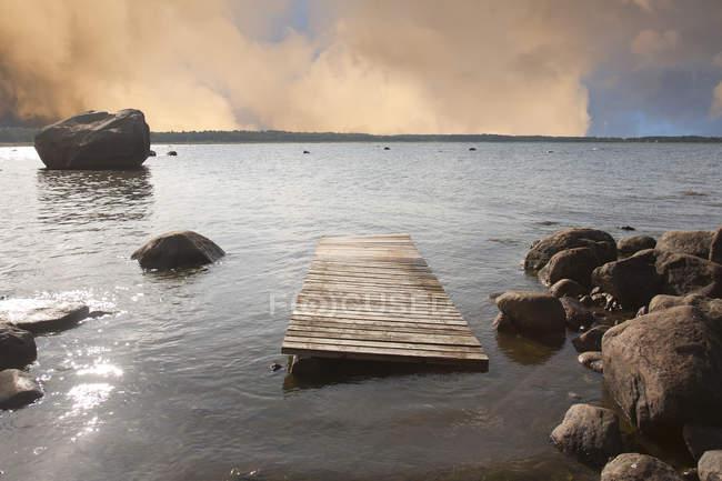 Masse en bois flottant sur le rivage rocheux en Estonie — Photo de stock