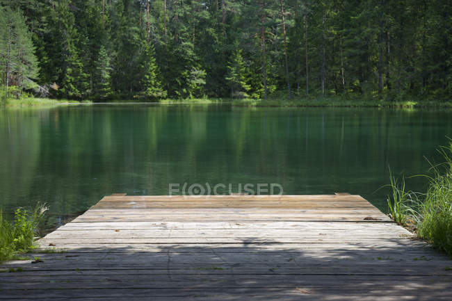 Antu Great Lake in woods and wooden pier in Estonia — Stock Photo