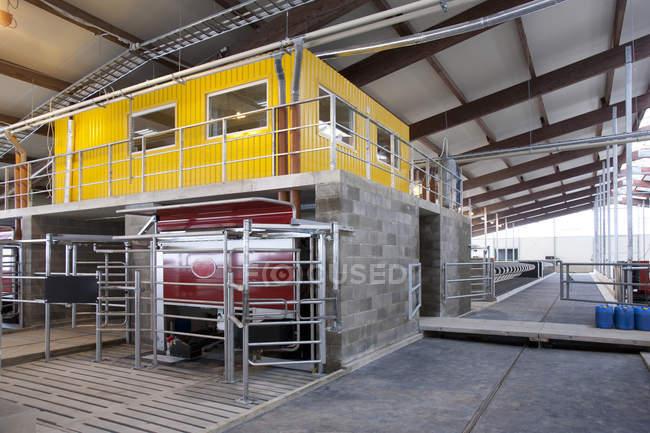 Офісно-доїльний апарат в автоматизованих молочній фермі в Естонії — стокове фото