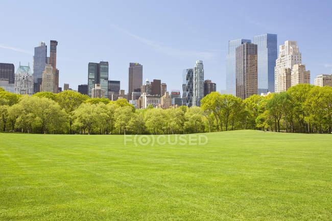 Pré vert de Central Park et de la ligne d'horizon avec les gratte-ciels de New York, é.-u. — Photo de stock