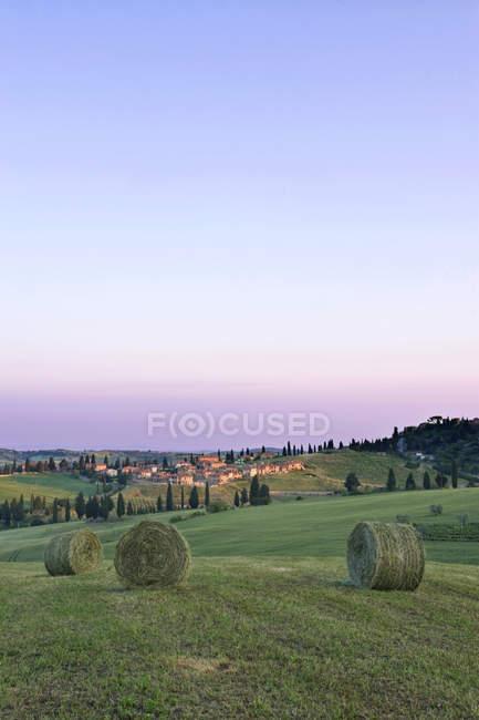 Сельдевые тюки, собранные на зеленом поле, Тоскана, Италия — стоковое фото