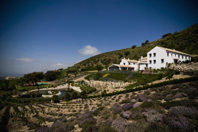 Загородный отель с садом и домами на обочине, Андалусия, Испания — стоковое фото