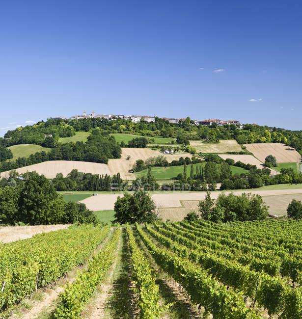 Сельские холмистые пейзажи в Тарн-эт-Гаронне, Франция, Европа — стоковое фото