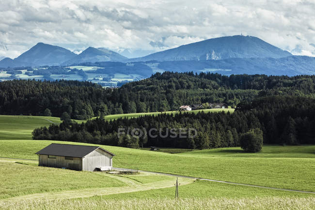 Barn in field with mountains and woodland, Salzkammergut, Austria — Stock Photo