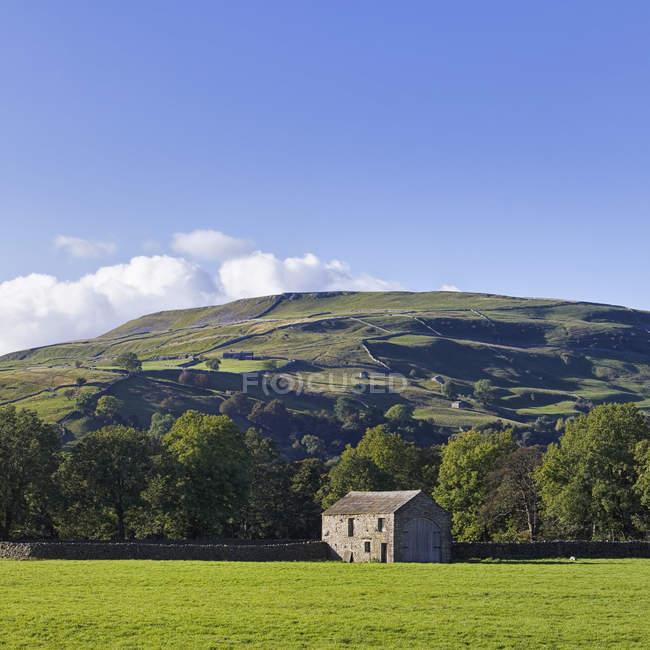 Fienile in verde valle con boschi di Swaledale, Yorkshire Dales National Park, Inghilterra, Gran Bretagna, Europa — Foto stock