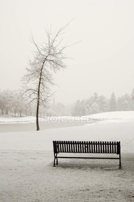 Banc de parc vide dans un paysage hivernal enneigé — Photo de stock