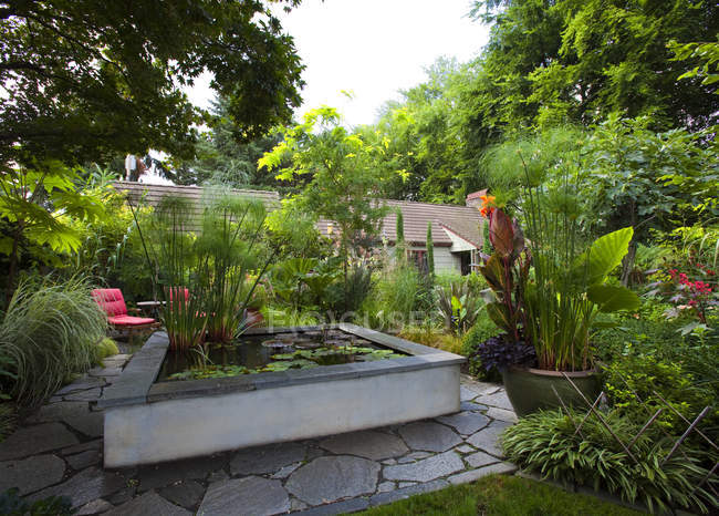 Landscaped garden with koi pond, Portland, Oregon, USA — Stock Photo
