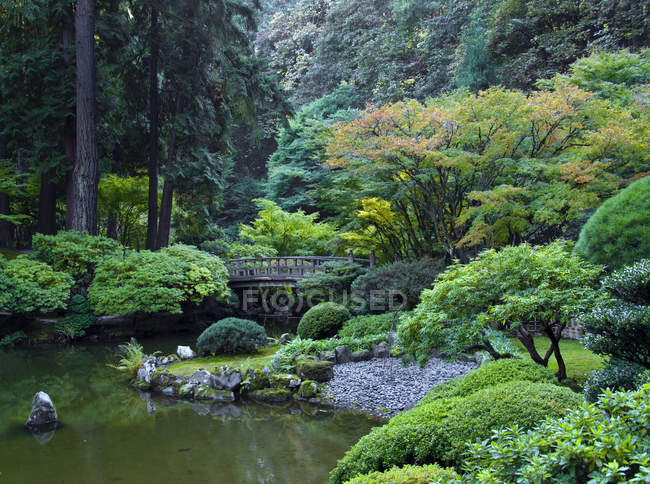 Japanese garden with pond and bridge in Portland, USA — Stock Photo