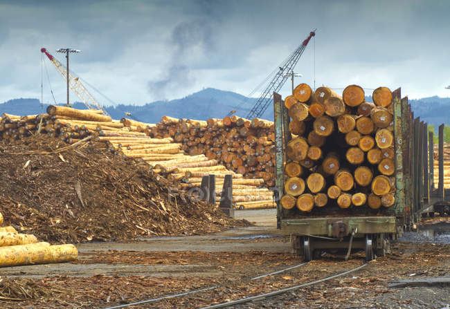 Logs on railroad trailer at lumber mill in Portland, Oregon, USA — Stock Photo