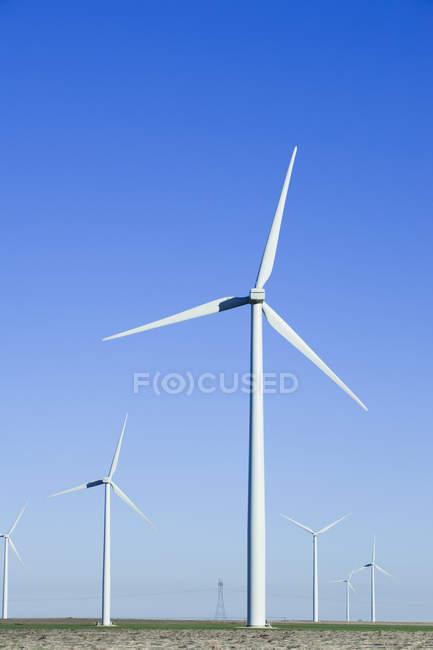 Turbinas eólicas rodando no campo contra o céu azul — Fotografia de Stock