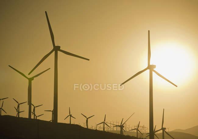 Turbinas eólicas al atardecer en California Valley, usa - foto de stock